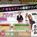 燃焼菌デトックスドリンクコンブチャクレンズ(KOMBUCHA CLEANSE)セパルフェ/コールドフュージョン