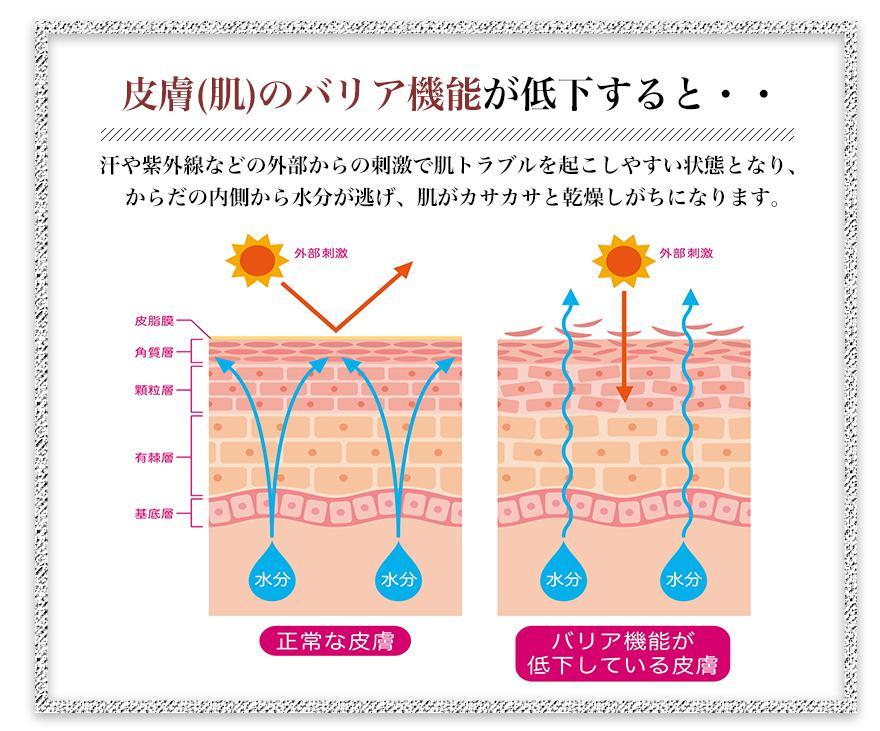 NONAME(ノーネーム)カカオ美容液 バリア機能の低下が肌トラブルの原因