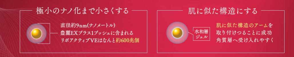 豊麗EXPLUS(プラス) 効果・効能2